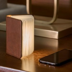 Mini Smart Book Light