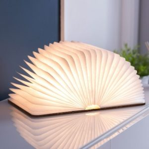 Large Smart Book Light